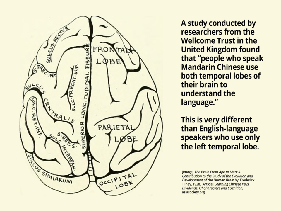 Learning Chinese is Good for Cognition | HudsonWay Immersion School